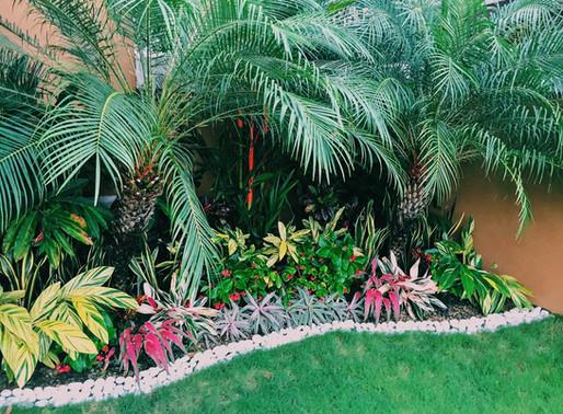Ideas para nuestro Jardín