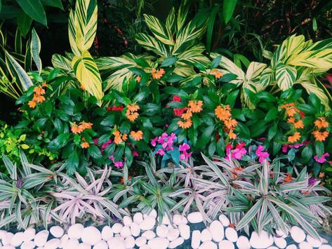 Jardines Floridos.