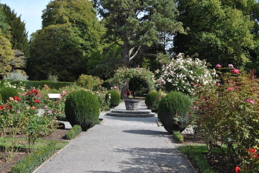 BotanicGardens_Christchurch.JPG