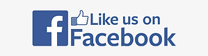 29-298467_check-us-out-on-facebook-png-f