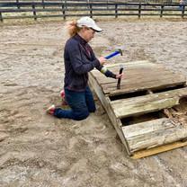 Elizabeth repairing rocking bridge.jpg