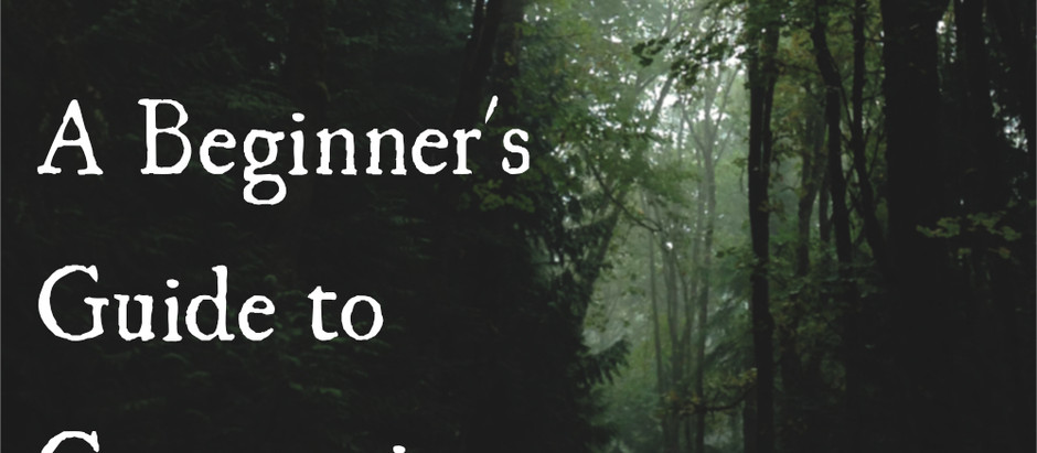 A Beginner's Guide to Communing with Nature