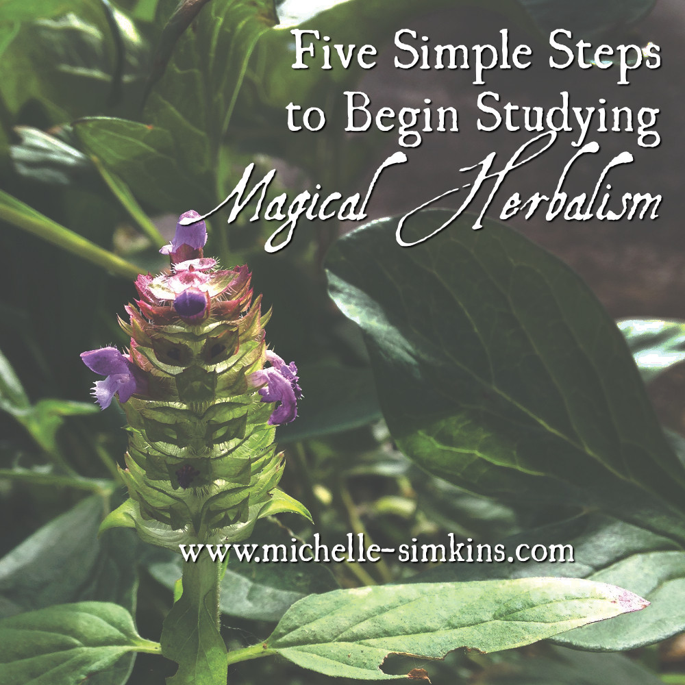 Five Simple Steps to Begin Studying Magical Herbalism