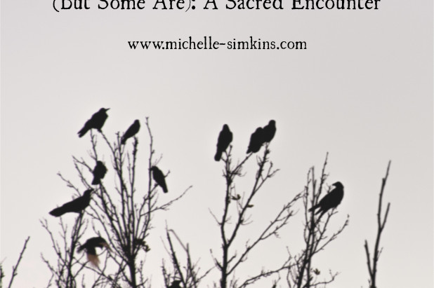 Not All Crows are Omens (But Some Are): A Sacred Encounter