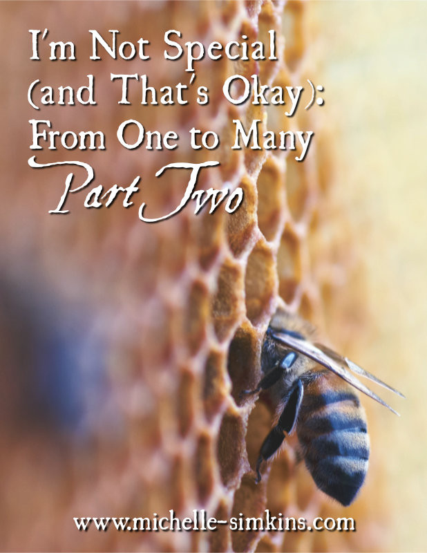 """Bee on honeycomb with the words """"I'm not Special (and That's Okay): From One to Many Part TWoy"""