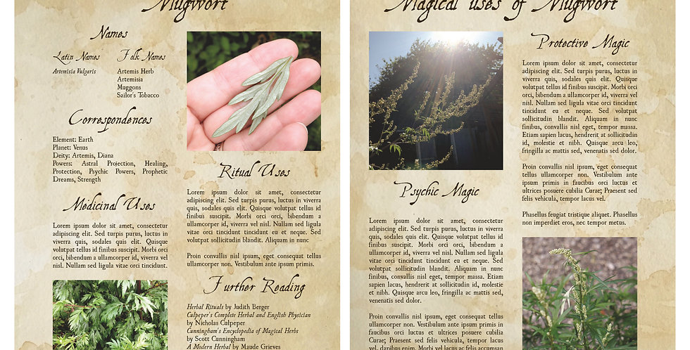 Mugwort Basics Book of Shadows Pages - Color, for 3-Ring Binder
