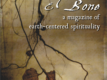 Call for Submissions: Stone, Root, and Bone