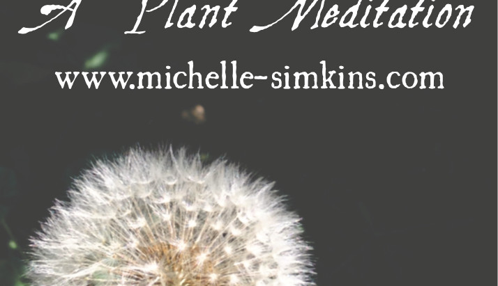 You Breathe Out, She Breathes In: A Plant Meditation