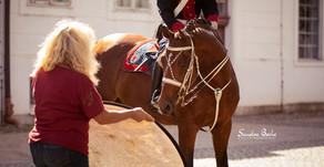 Heißer Sommer, viele Pferde, Sonnenbrand, Fotografie und eine Menge Spaß.