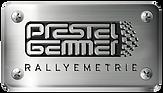 P+G_Logo-METALL.png