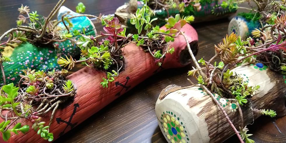 Succulent Driftwood Garden Workshop
