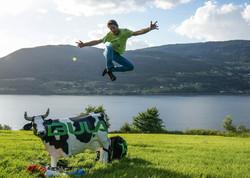 Bula show cow infinity Francois Ragolski Norway