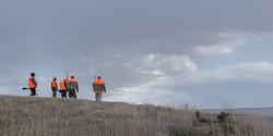 Pheasant hunters in SD