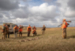 sam stukel,pheasant hunting-47.jpg