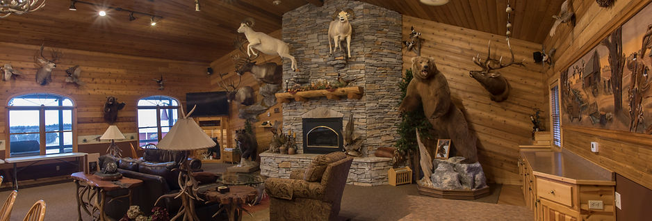 Trophy room taxidermy at Stukel's hunting lodge.