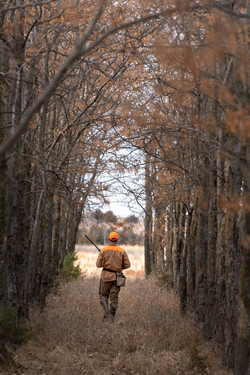 Hunting in the woods