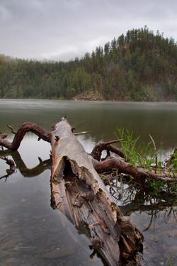 Lake Pactola