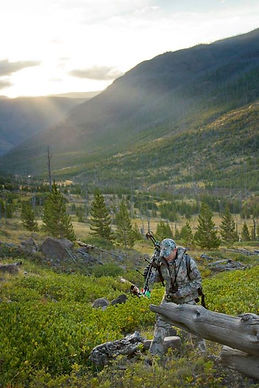 Bowhunting for elk in the mountains of Wyoming.