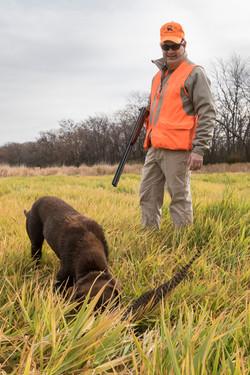 A pheasant hunter ng,2017,stukel (5)