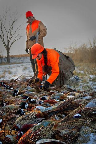 Pheasant hunting guide Sky Stukel