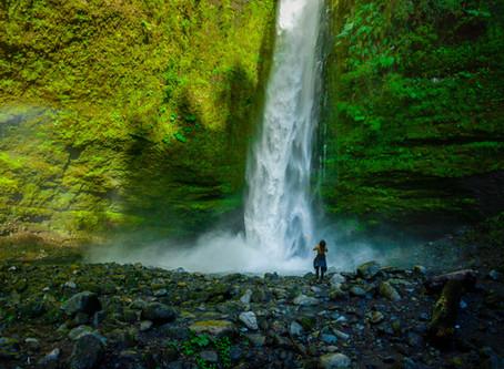 Cascadas: un paraíso tropical en la Patagonia
