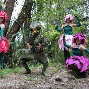 Carnaval del Sur, la organización de las máscaras