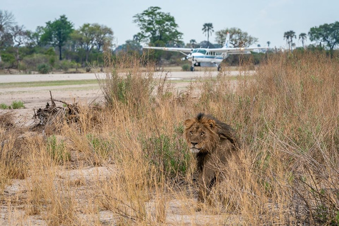 Wilderness Air to open a private lounge at Victoria Falls International Airport