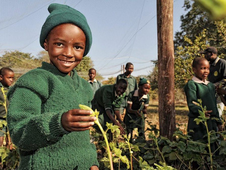 Community Development Projects in Hwange National Park, Zimbabwe