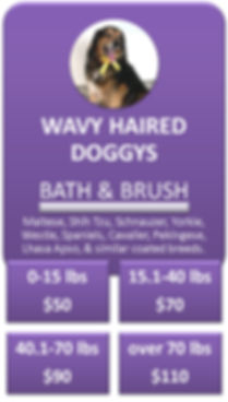 Wavy Haired Dog Bath and Brush Cottonwoo