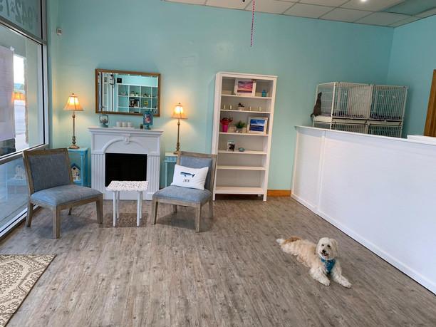 Safe Loving Dog Grooming Salon