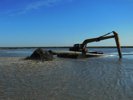 The Morasses of Louisiana's Coastal Wetland Restoration, Part 1