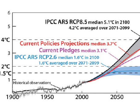 I. Alaskan and Canadian Arctic Warming