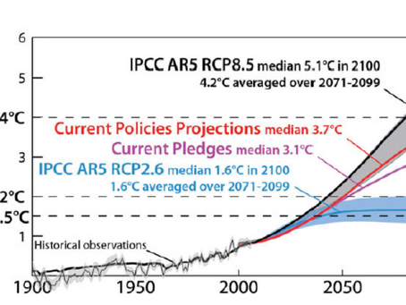 I. Alaskan and Canadian Arctic Warming