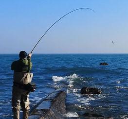 Major Craft Saltwater Shore Rods