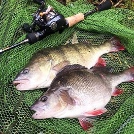 Major Craft Freshwater Lure Rods