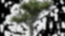 __videouploadss--27873__p2.png