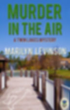 Murderer In the Air | Marilyn Levinson