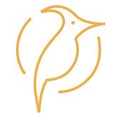 woodpecker logo orange (1).png