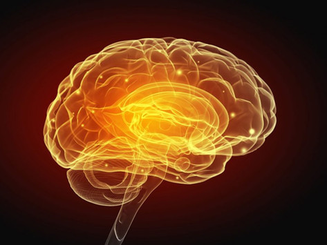 Are you neuro-smart?