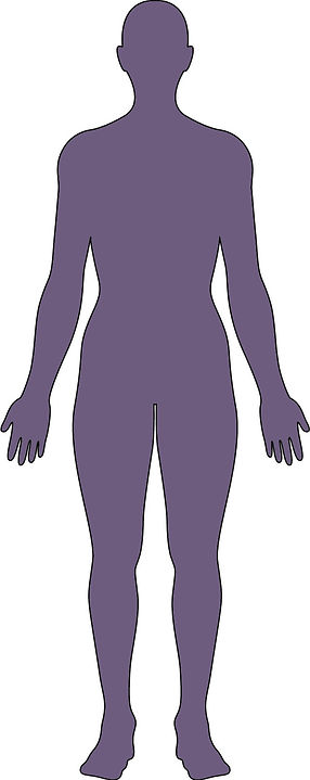 Body for Medical Library dark purple whi