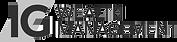 ig Virtual logo.png