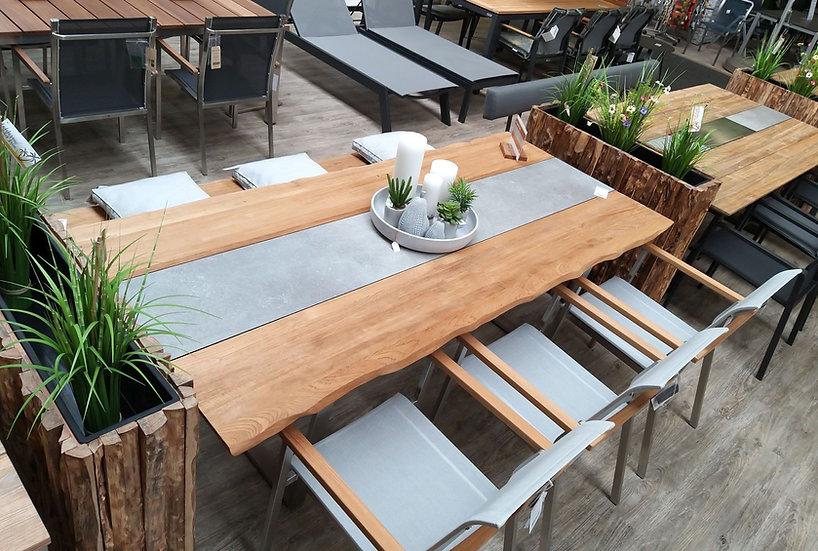 Zebra UNYX mit INFINITY Dining Sitzgruppe