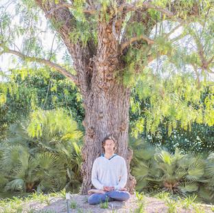 Meditating Tree.jpg