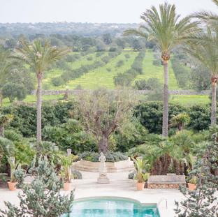 Cal Reiet Pool Landscape.jpg