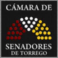 CAMRA DE SENADORES.png