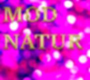 78398732_2621911384566730_21240424895925