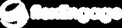 flexEngage_logo.png