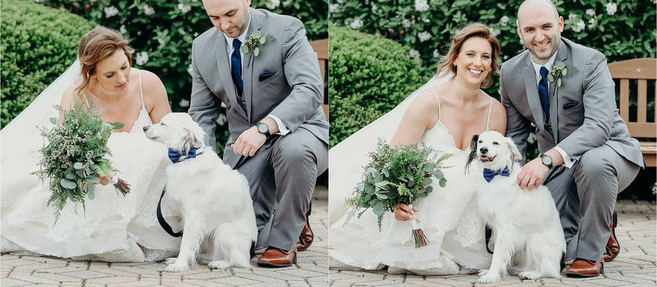 Mark + Emily // Wedding