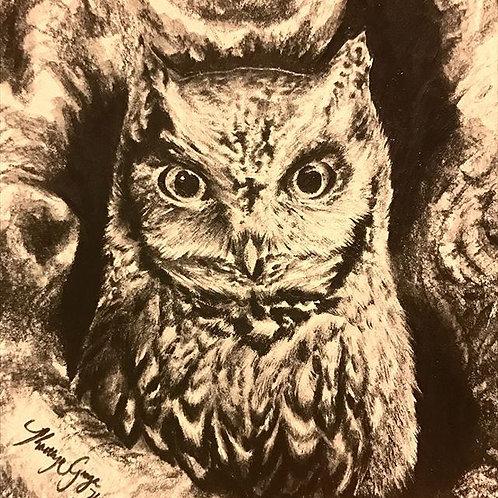 OWL (print)