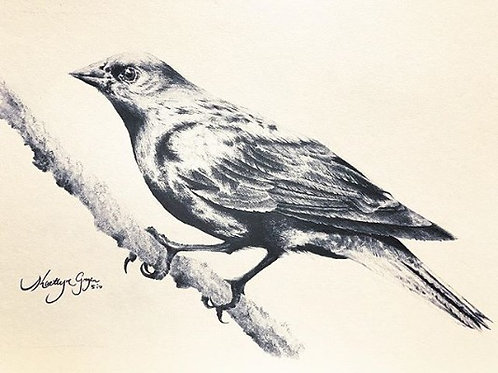 COWBIRD (print)